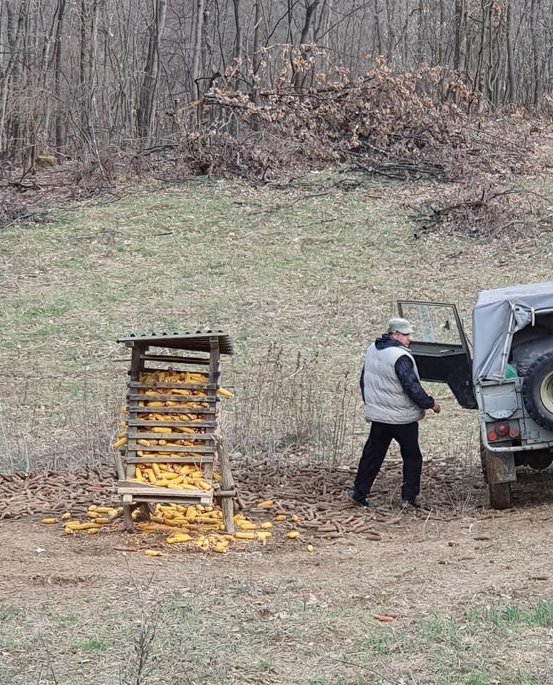Radna akcija u lovištu, mart 2020. godine